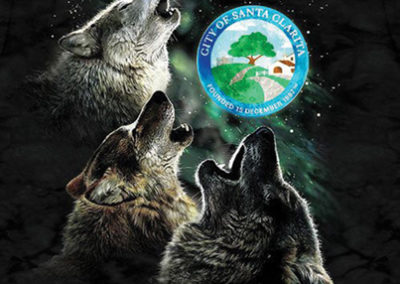 COM-TMSG-P2-Wolves