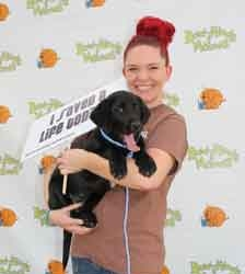 15th Annual Bow-Wows & Meows Pet Fair Breaks Record with 200 Adoptions
