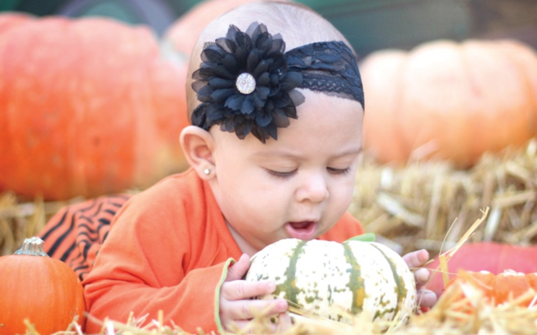 Harvest Festival Features Pumpkin Cooking Contest, Pig Races, Food Trucks and more – Gilchrist Farms