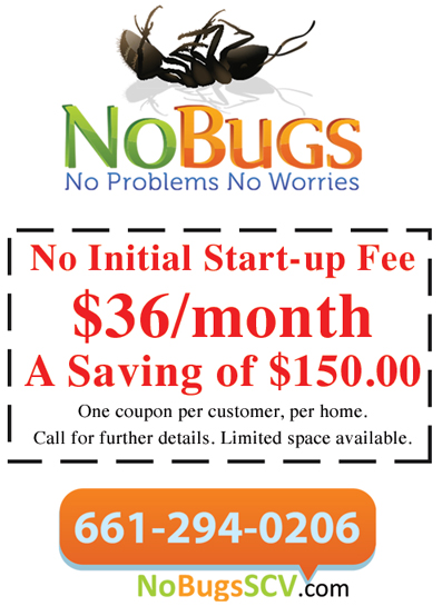 No-Bugs-Coupon