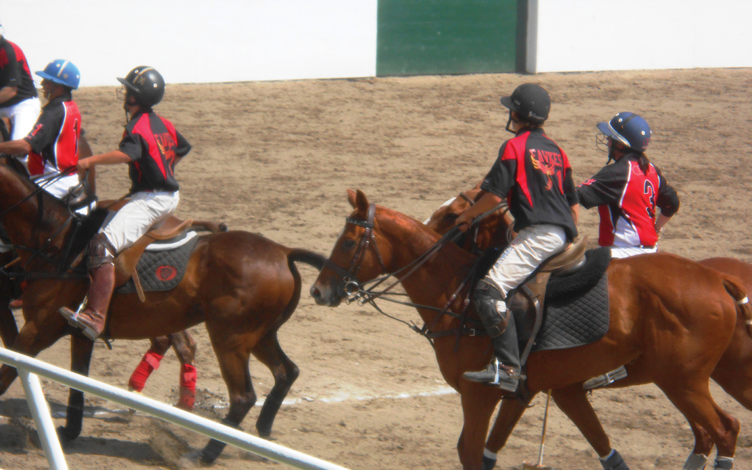 Polo for a Cause A Blue Star Ranch Event