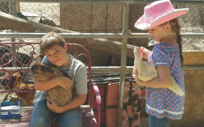 Spring Fling and Egg Hunts at Gilchrist Farm